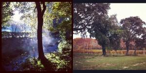 Nature Running Instagram Anne Dubndidu