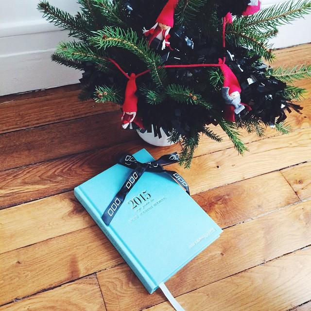 ??Au pied de mon sapin de Noël s'est déjà glissé l'agenda 2015 @lornajaneactive ? J'ai hâte de l'entamer au mois de janvier ???? #lornajane #lornajaneagenda #2015 #agenda #book #christmas #christmastree #gift #lornajaneactive @lornajanefrance #instafit #getfit #fitfam #healthspo