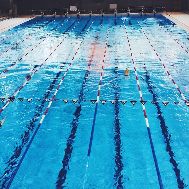 Retour à la piscine ce matin ? Dur de se motiver, il faisait très FROID dehors, mais on oublie vite une fois dans l'eau. ?? Même programme que vendredi : 55 min de nage avec un gros travail sur le crawl à nouveau ??? #motivation #training #swimming #montpellier #swimsuit #getfit #instafit #makeitcount #swim #pool #bythepool #triathlon #fispiration #swimmingpool #healthspo ?⚡️