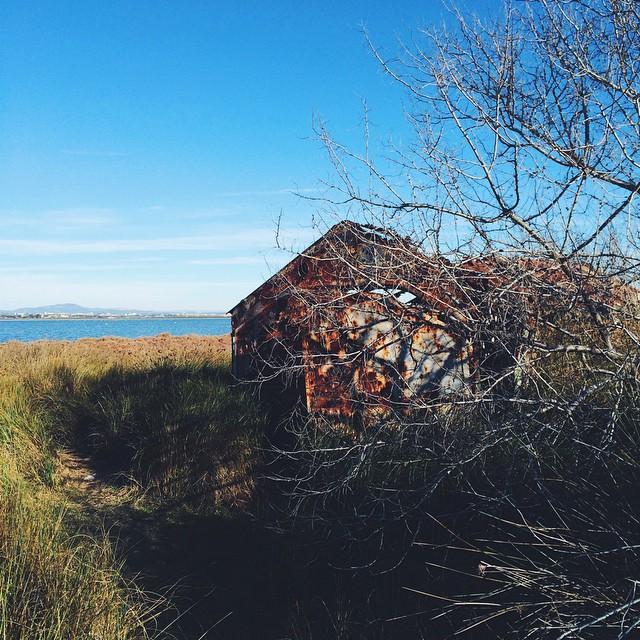 ☀️Entre mer et étang ? Petite maison abandonnée ?? #southoffrance #palavas #ocean #sea #beach #france #winter #sunny #bluesky #sun #sunlight ?
