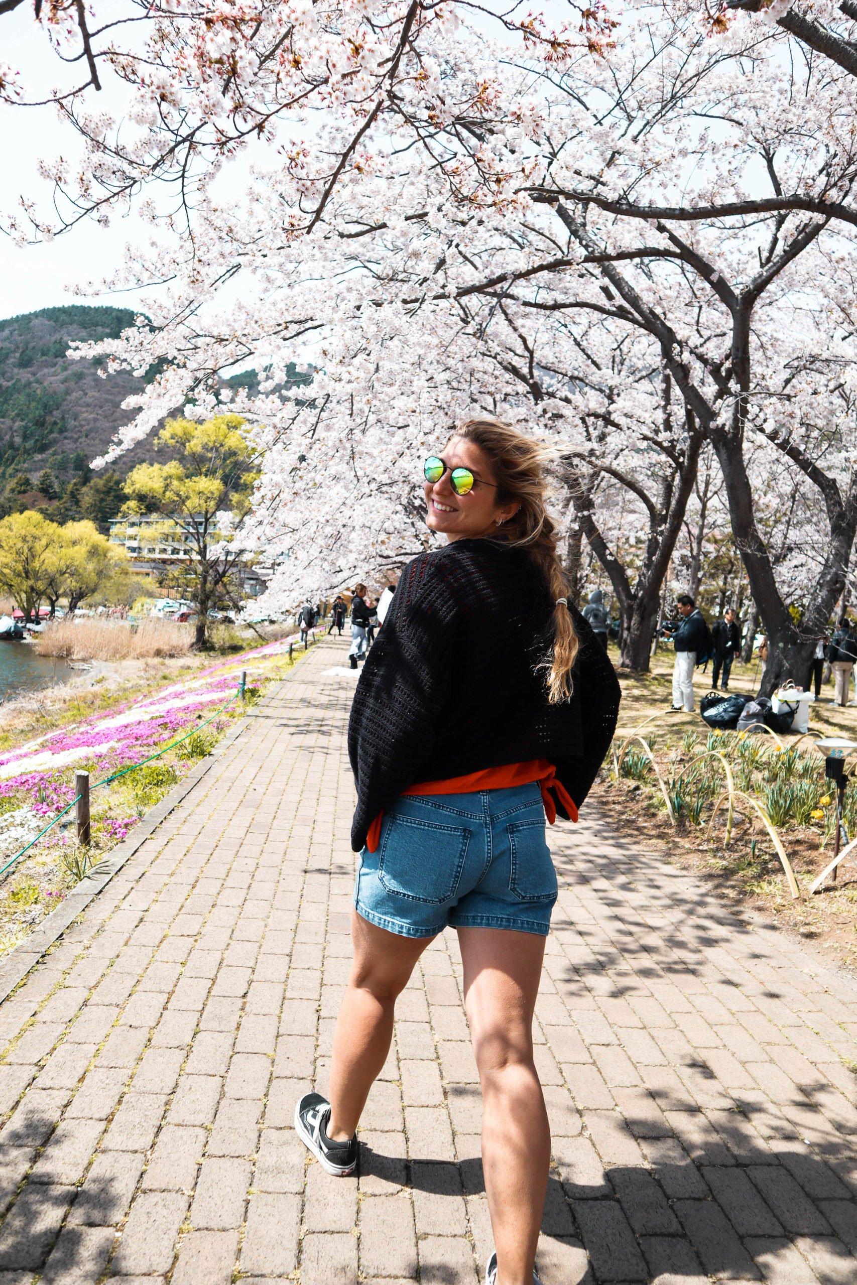 Cherry Blossom #828