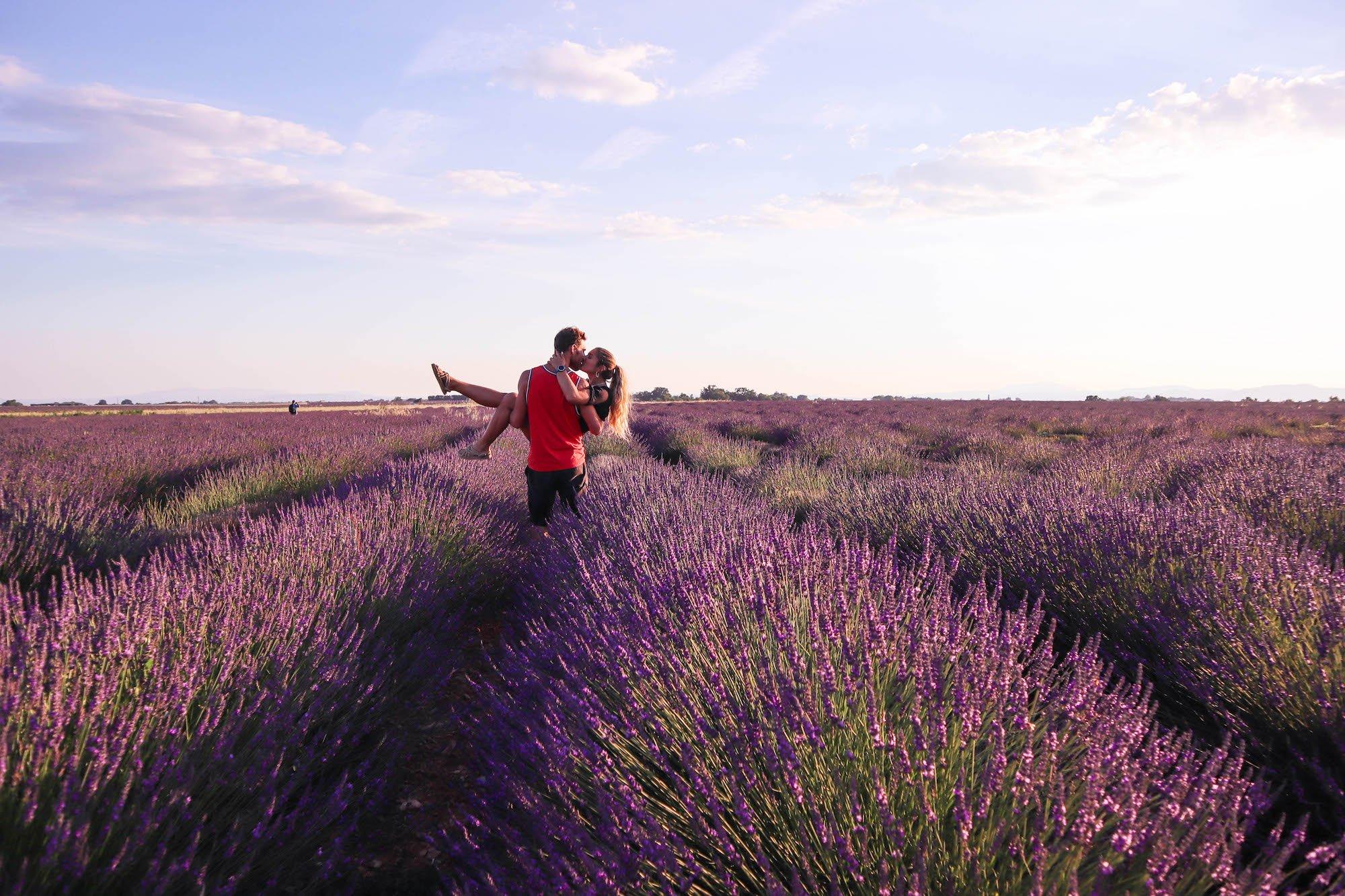 En Provence, au pays de la Lavande (mais pas que)