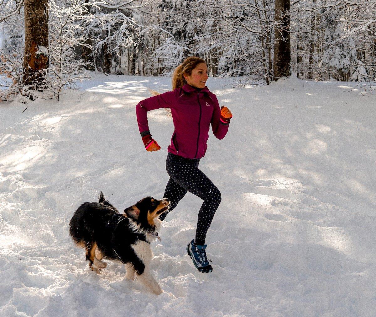 6 Conseils avant de débuter la course à pied avec son chien